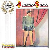 Thumbnail for the Alfredo Sadel - El Disco de Oro de ... Alfredo Sadel link, provided by host site