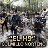 Thumbnail for the Colmillo Norteno - El H9 link, provided by host site