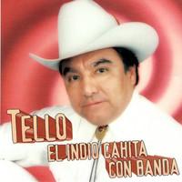 Thumbnail for the Tello - El Indio Cahita Con Banda link, provided by host site