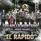 Thumbnail for the Colmillo Norteno - El Rápido link, provided by host site