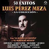 Thumbnail for the Luis Pérez Meza - El Sauce y la Palma link, provided by host site