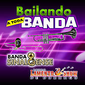 Thumbnail for the Banda El Recodo - El Sauce y la palma link, provided by host site