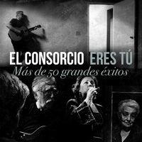 Thumbnail for the El Consorcio - El Sitio de Mi Recreo link, provided by host site