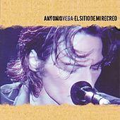Thumbnail for the Antonio Vega - El Sitio de mi Recreo link, provided by host site