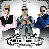 Thumbnail for the Acento Latino - El Tsunami II link, provided by host site