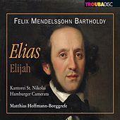 Thumbnail for the Michael Connaire - Elias, Op. 70, MWV A25: Part I: Aria: So ihr mich von ganzem Herzen suchet (Obadjah) link, provided by host site