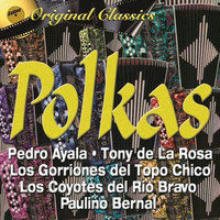 Thumbnail for the Tony de la Rosa - Elida link, provided by host site