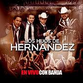Thumbnail for the Los Hijos De Hernández - En Vivo Con Banda link, provided by host site