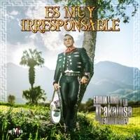 Thumbnail for the Edwin Luna y La Trakalosa de Monterrey - Es Muy Irresponsable link, provided by host site