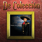 Image of Pedro Fernandez linking to their artist page due to link from them being at the top of the main table on this page