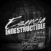 Thumbnail for the Combinación de la Habana - Esencia indestructible link, provided by host site
