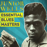 Thumbnail for the Junior Wells - Essential Blues Masters link, provided by host site