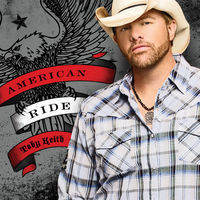 Thumbnail for the Toby Keith - Every Dog Has Its Day link, provided by host site