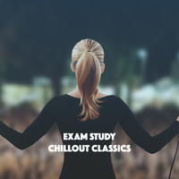 Thumbnail for the Exam Study Classical Music Orchestra - Exam Study Chillout Classics link, provided by host site