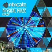 Thumbnail for the Physical Phase - Exploit link, provided by host site