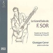 Thumbnail for the Giuseppe Carrer - F. Sor: Le grand solo link, provided by host site