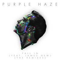 Thumbnail for the Purple Haze - Fall In [The Remixes] link, provided by host site