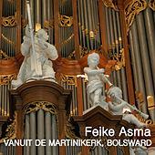 Thumbnail for the Feike Asma - Feike Asma in de Martinkerk, Bolswaard link, provided by host site