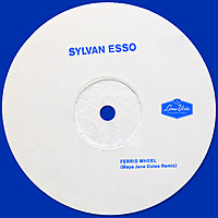 Thumbnail for the Sylvan Esso - Ferris Wheel (Maya Jane Coles Remix) link, provided by host site