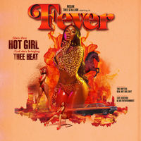 Thumbnail for the Megan Thee Stallion - Fever link, provided by host site