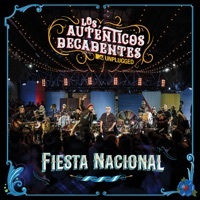 Thumbnail for the Los Auténticos Decadentes - Fiesta Nacional (MTV Unplugged) link, provided by host site