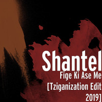 Thumbnail for the Shantel - Fige Ki Ase Me (Tziganization Edit 2019) link, provided by host site