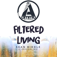 Thumbnail for the Sean Biddle - Filtered Living (Original Mix) link, provided by host site