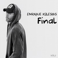 Thumbnail for the Enrique Iglesias - FINAL (Vol.1) link, provided by host site