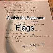 Thumbnail for the Catfish and the Bottlemen - Flags link, provided by host site