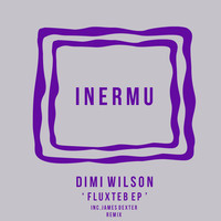 Thumbnail for the Dimi Wilson - Fluxteb link, provided by host site
