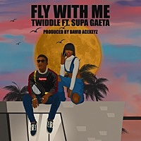 Thumbnail for the Twiddle - Fly With Me link, provided by host site