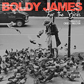 Thumbnail for the Boldy James - For the Birds link, provided by host site