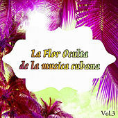 Thumbnail for the Orquesta Riverside - Frenesí link, provided by host site