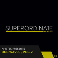 Thumbnail for the Nae-tek - G-Wave - Roberto Figus Rmx link, provided by host site
