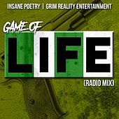 Thumbnail for the Insane Poetry - Game of Life (Radio Mix) link, provided by host site