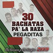 Thumbnail for the El Gringo De La Bachata - Gavilan O Paloma link, provided by host site