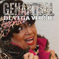 Thumbnail for the SOPHIE - Gehaktbal De Vega Versie link, provided by host site
