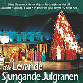 Thumbnail for the Jan Holmgren - Gläd dig o värld link, provided by host site