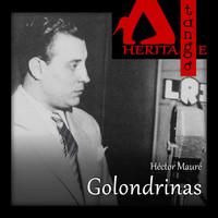 Thumbnail for the Héctor Mauré - Golondrinas link, provided by host site