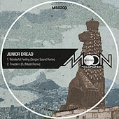 Thumbnail for the Junior Dread - Gorgon Sound & Dj Madd Remixes link, provided by host site