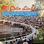 Thumbnail for the Violeta Parra - Gracias a la Vida link, provided by host site