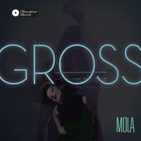 Thumbnail for the MoLa - GROSS link, provided by host site