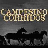 Thumbnail for the Los Dos Gilbertos - Guadalajara link, provided by host site