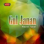 Thumbnail for the Nazia Iqbal - Gul Janan link, provided by host site