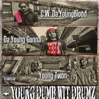 Thumbnail for the C.W. Da Youngblood - Gunz in the Car link, provided by host site