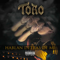 Thumbnail for the Toro - Hablan Detras de Mi link, provided by host site