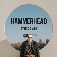 Thumbnail for the Milo - Hammerhead link, provided by host site