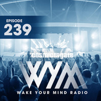 Thumbnail for the Above and Beyond - Happiness Amplified (WYM239) - Josep Remix link, provided by host site