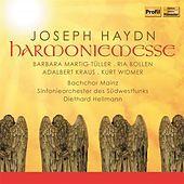 Thumbnail for the Adalbert Kraus - Haydn: Harmoniemesse link, provided by host site