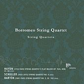 Thumbnail for the Borromeo String Quartet - Haydn, Schuller, Bartók: Works for String Quartet link, provided by host site